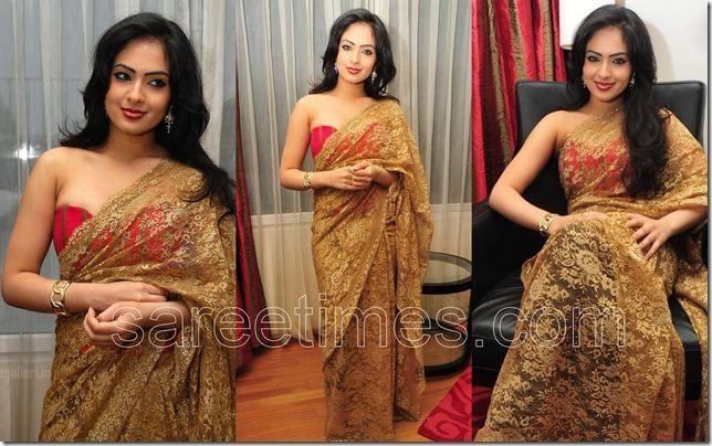 sari  in pizzo dorato - Cerca con Google