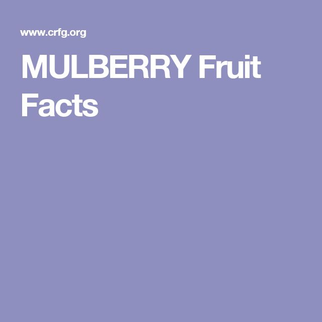 MULBERRY Fruit Facts