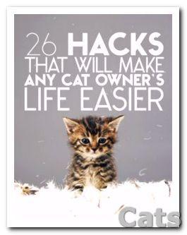 26-Terrific Hacks That Will Make Any Cat Ower's Life Easier.