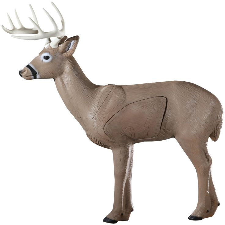 best 3d deer targets