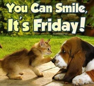8 best Happy Weekend! images on Pinterest | Funny animals ...