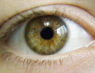 Green Eye Color Chart | eyes may indicate a strong and independent person hazel eyes