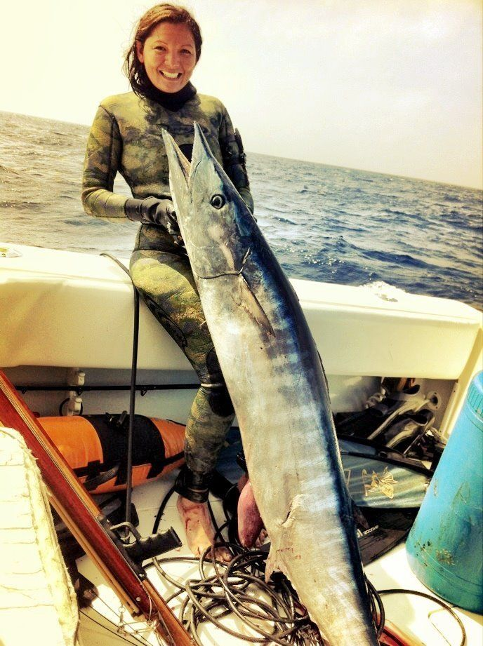 Amazing wahoo.... Imagine the fight on spear.  #fishing #spearfish