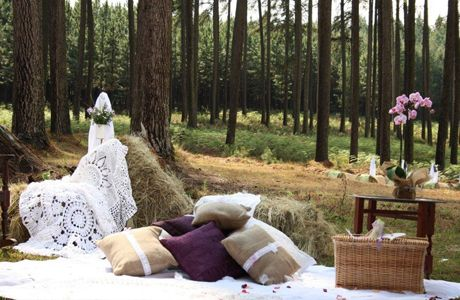 wedding ideas to surprise guests 10 best images about vintage picnic ideas on 28029