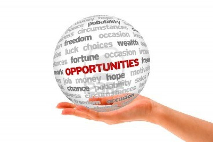 What opportunity are you seeking?