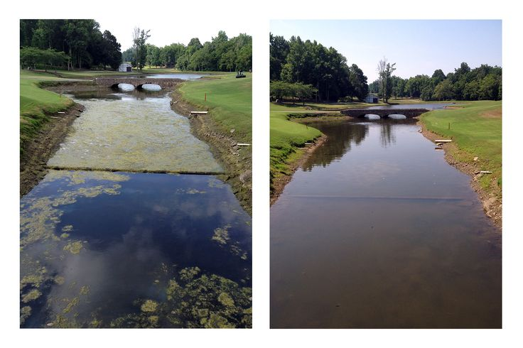 39 best before and after lake management images on