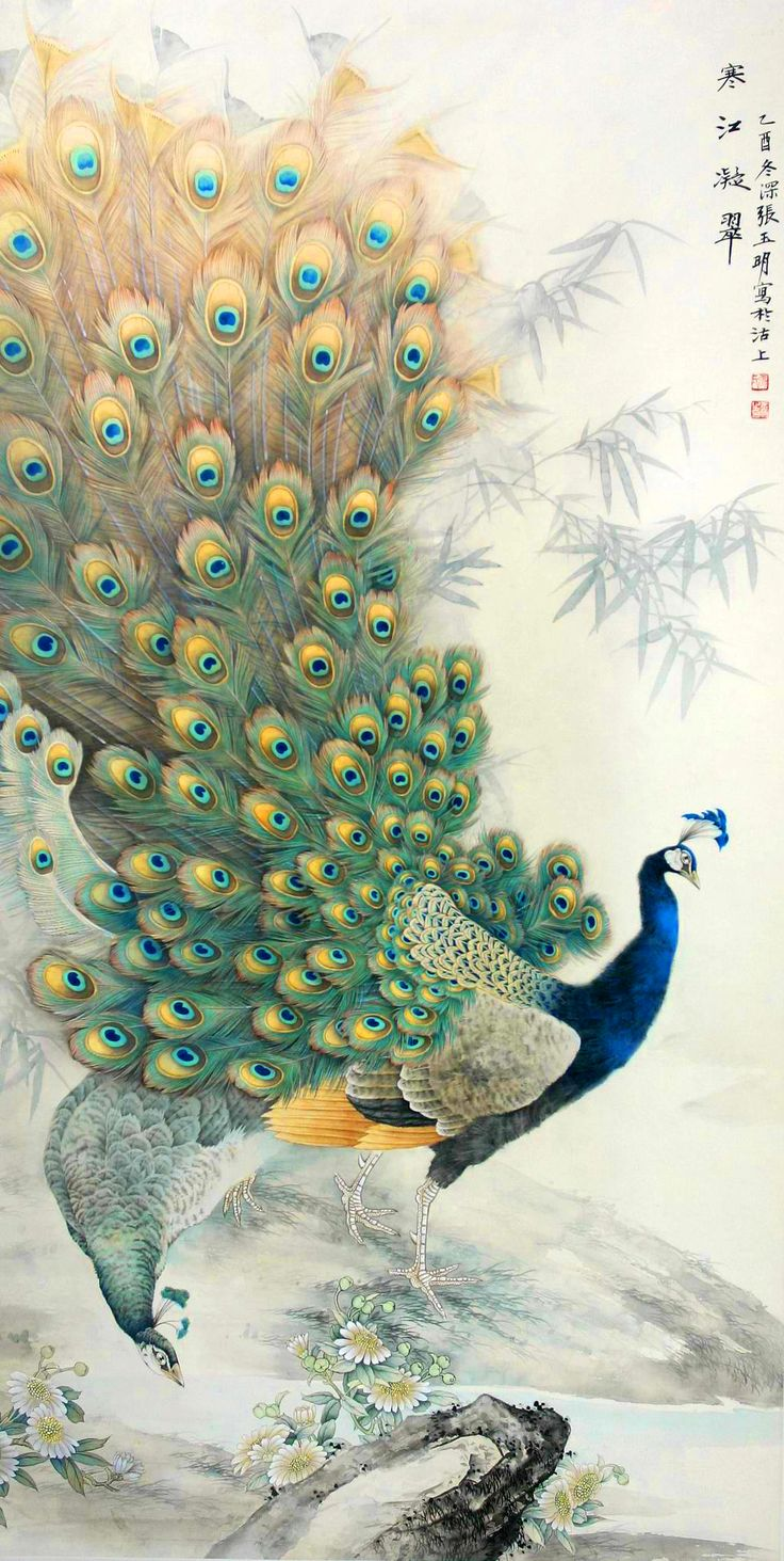 1000+ Ideas About Peacock Painting On Pinterest