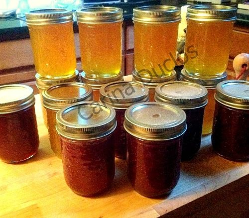 How to Make Jam. There's lots of helpful tips and great instructions so take a look. Easy too!
