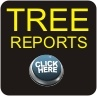 TREE REMOVAL THE PROFESSIONAL WAY!!  Cost effective tree removal and stump grinding in Adelaide  http://aaaeffectivetreesolutions.com.au/