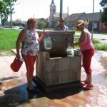 Seminar de informare și educare a cetățenilor organizat la Pecica jud Arad – 15 iunie 2013