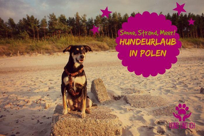 MIt Hund am Strand in der Hochsaison? Kein Problem in Polen. Hund und Ich berichtet vom Hundeurlaub im Osten. Geil, oder geht so?