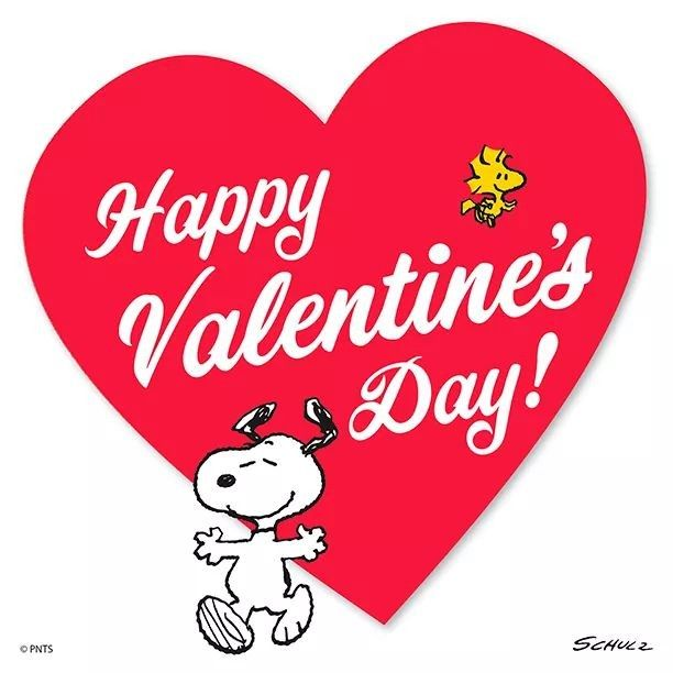 Pin By Lisa Ayala On Charlie Brown And The Peanuts In 2020 Snoopy Valentine Snoopy Valentine S Day Valentines