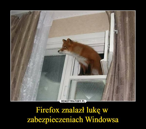 Firefox in the Windows!