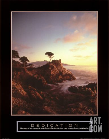 Dedication: Lone Cypress Art Print at Art.com