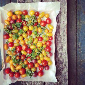 tomates caramélisées au four