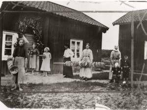 Spisbrödsbak. Allt bröd bakades hemma på gården. Kvinnorna håller i en stång med brödkakor de bakat. Den hängdes sedan upp i taket inne i stugan för torkning. På så vis höll sig brödet länge och mössen kom inte åt det. Västmanland, Köpings socken, 1912. Fotograf: okänd