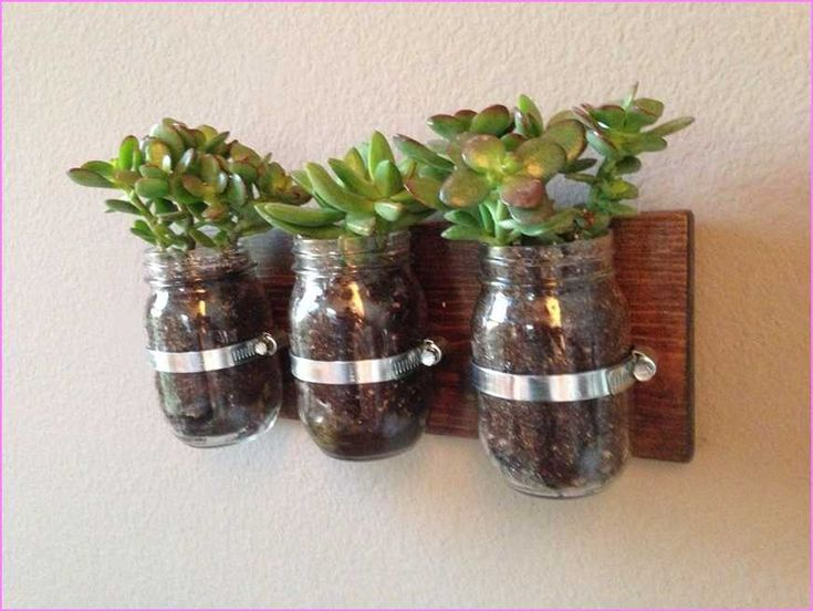 Indoor Plant Wall Sconces : 1000+ ideas about Indoor Wall Planters on Pinterest Wall planters, Plant stands and Enclosed ...