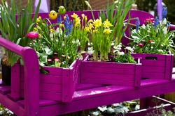 Bench Flower BoxesGardens Ideas, Colors Flower, Painting Cans, Pallets Benches, Vibrant Colors, Upcycling Gardens, Planters, Bold Colors, Flower Boxes