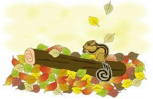 Herfst. Bewegen met kleuters