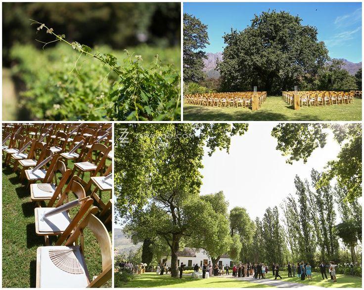 #Outdoor #wedding #ceremony at #Molenvliet Wine Estate near Stellenbosch, South Africa.  See more of this wedding on the ZaraZoo Photography blog http://www.zara-zoo.com/blog/molenvliet-wedding-photos-stellenbosch