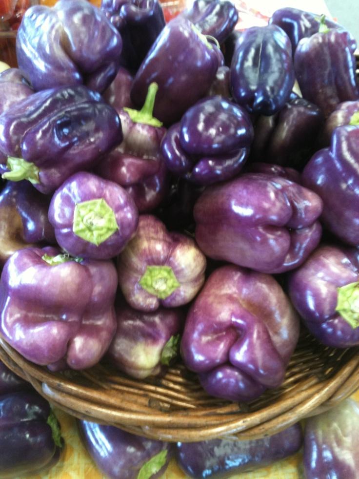 Purple Peppers, Greensboro Farmers Market #GSO BentTuba.com