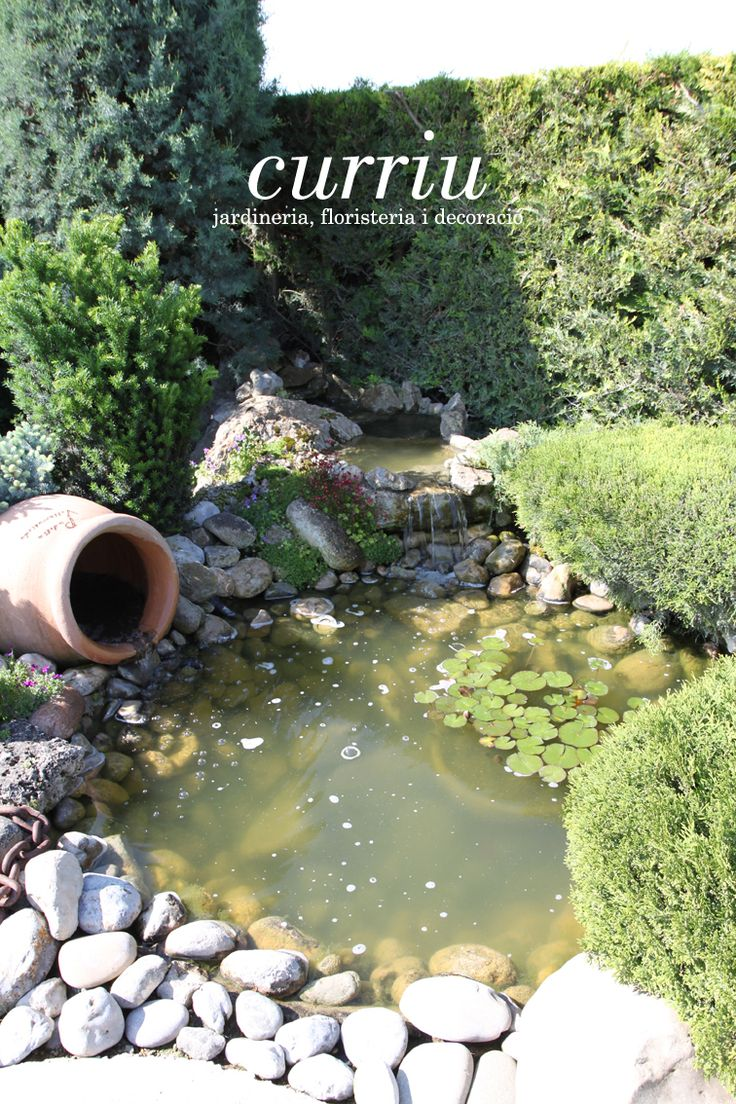 Petits estanys i fonts. #curriugarden #curriudeco #paisatgism #summer #waterplace