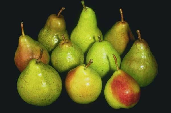 Profumo: pera #bouquet #pear