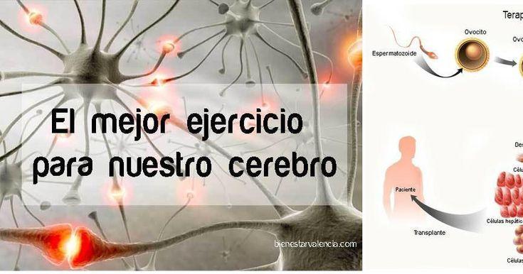 Este es el mejor ejercicio para la regeneración de neuronas