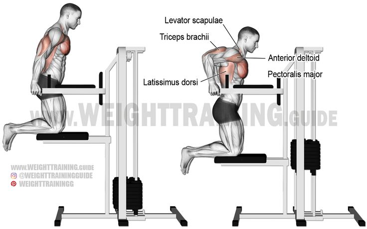 muscle motion rack instructions