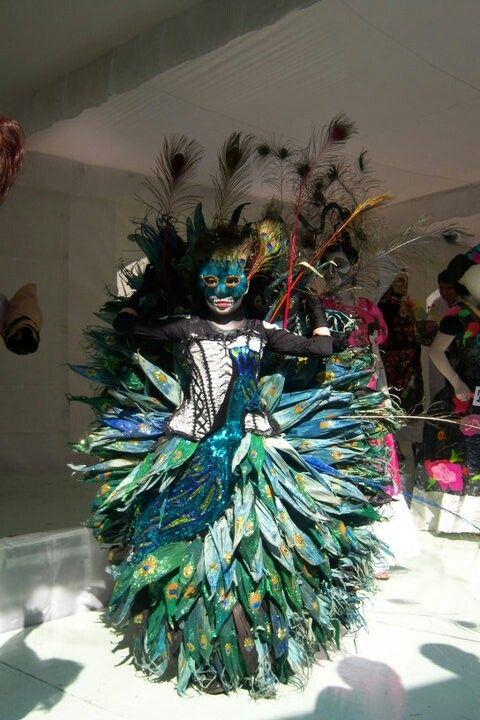 #peacock #mexico #disfraz