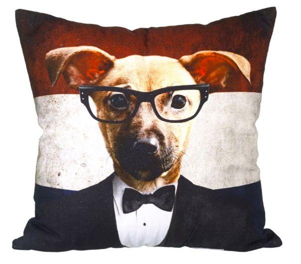 Cutest cushion EVER!