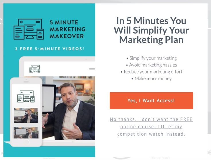 Optin for In 5 Minutes You Will Simplify Your Marketing Plan