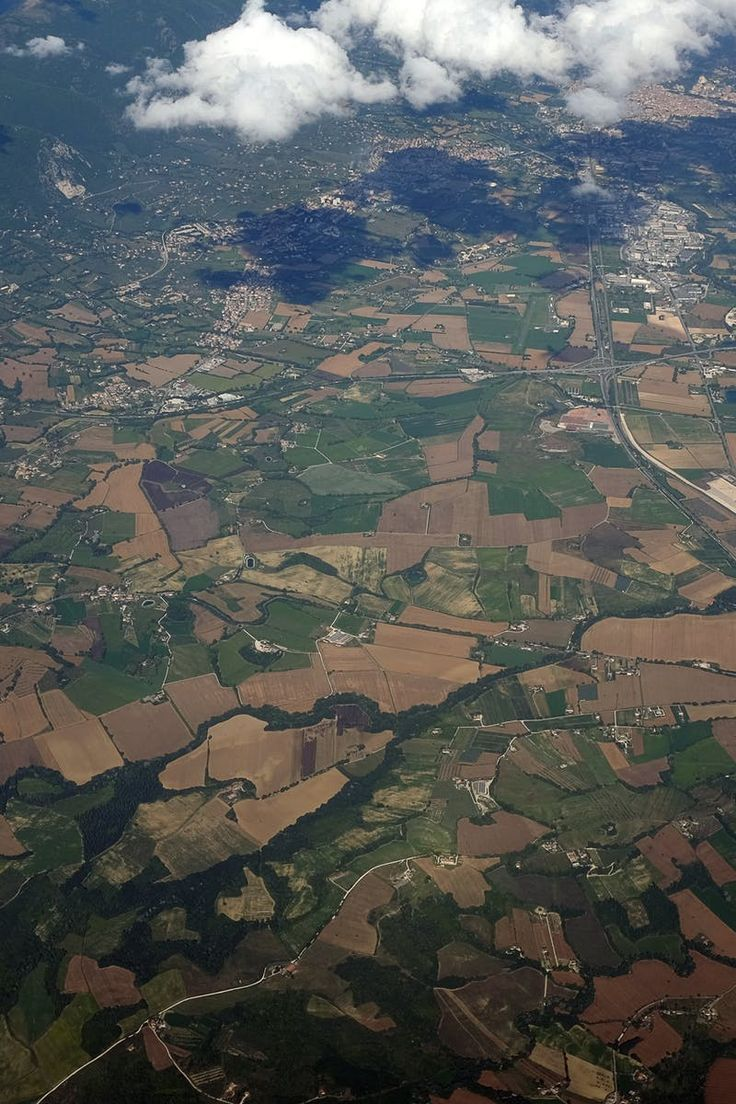 Top View of Green and Brown Field
