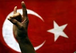 Image result for lupi grigi turchi