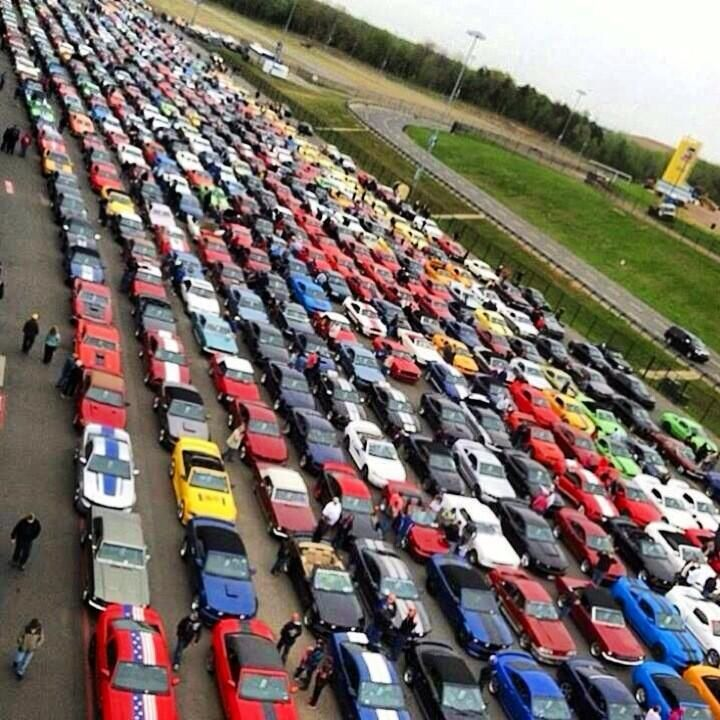 Now that's a lot of Ford Mustang! ... | Twitter / @Jone evan
