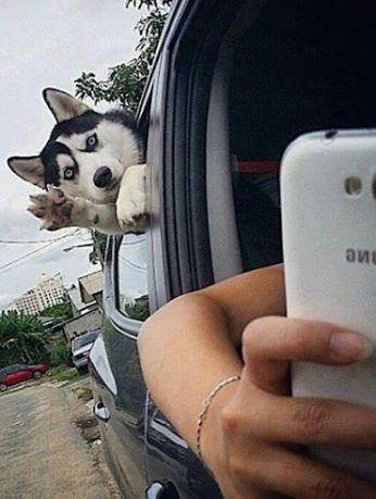 ... jus' struck me funny!!!! lol lol lol lol........
