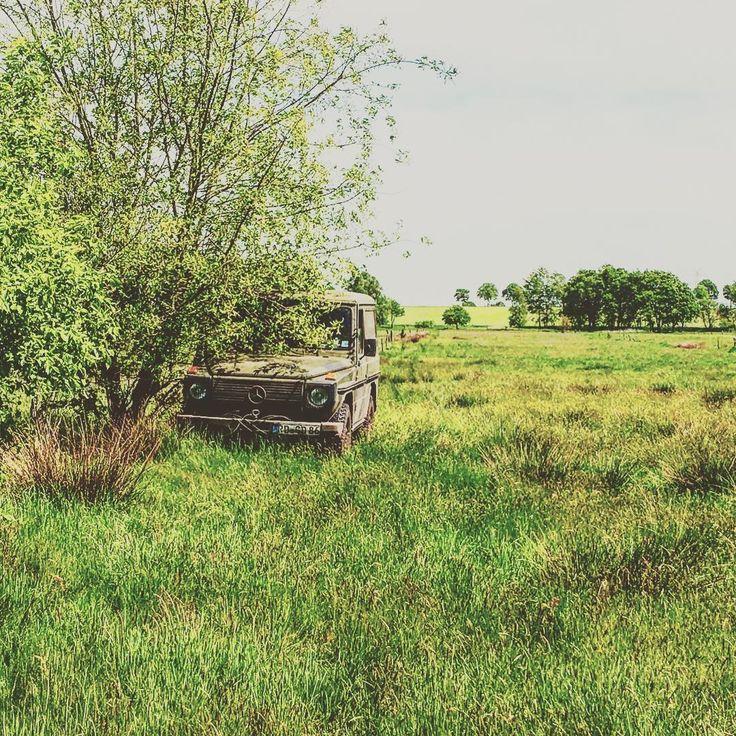"""34 kedvelés, 4 hozzászólás – Horst (@hueybell1966) Instagram-hozzászólása: """"#w460 #classiccar #mercedesbenz #mercedesG #Gwagon #GD300 #300GD #allrad #offroad #hunting #jakt…"""""""