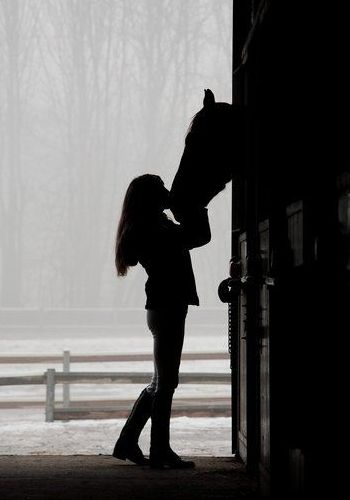 """Every horse deserves, at least once in his life, to be loved by a little girl."" I wish I knew who said that."
