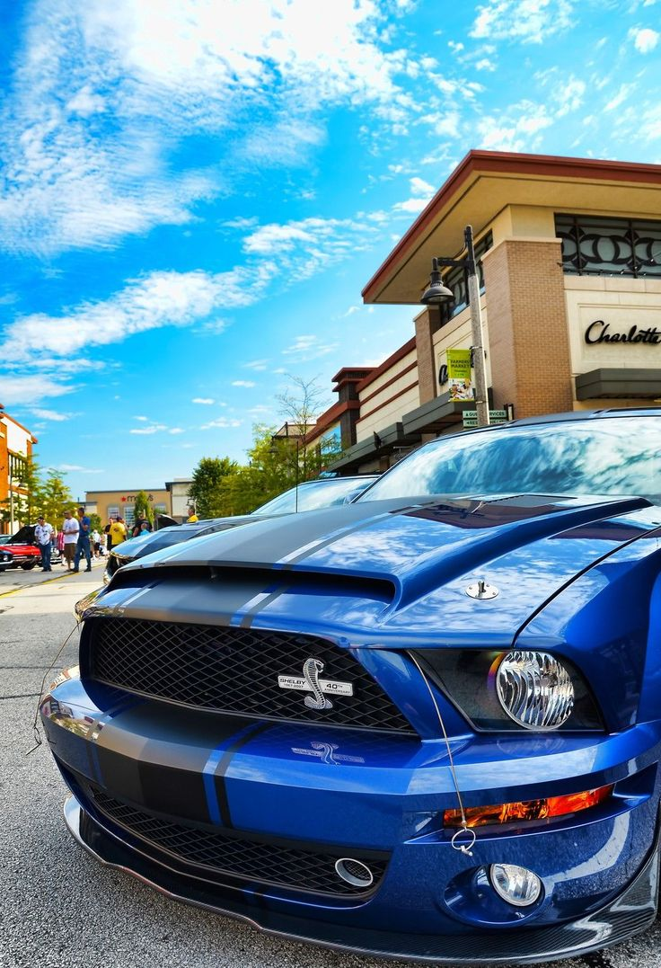 Ford Mustang Super Snake. Shelby GT500 Super Snake Car