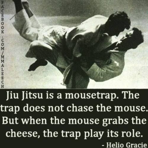 Jiu Jitsu Quotes: Best 25+ Jiu Jitsu Moves Ideas On Pinterest