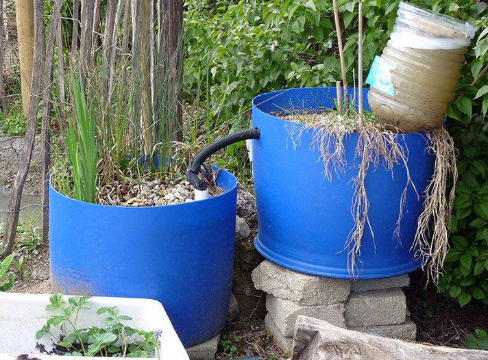17 best ideas about diy pond on pinterest outdoor ponds for Do it yourself pond filter