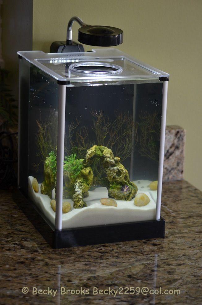 12 best images about office fish tank on pinterest home - Petit aquarium design ...