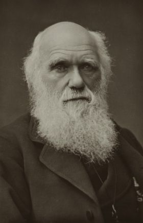 Charles Darwin - I find him inspiring because depsite what he wanted to believe and knowing how society at the time would react to his research findings he still stuck to what he thought was right and published anyway. He went against the grain for what he believed and I respect him for that.