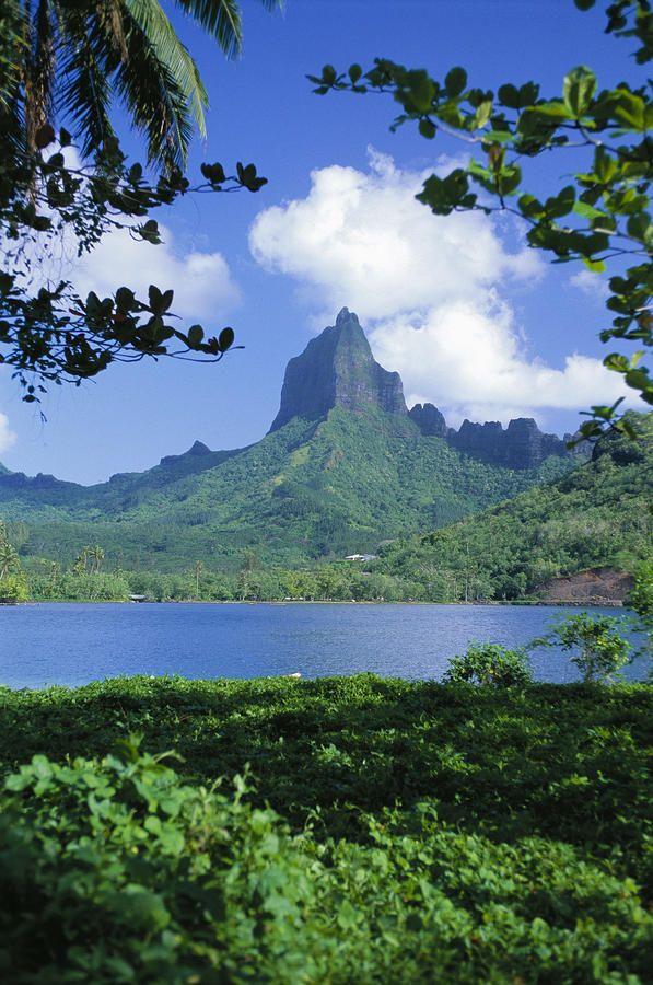 ✮ French Polynesia, Moorea