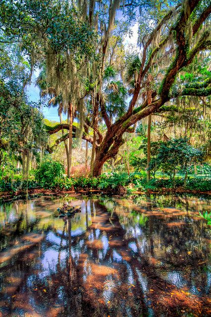 17 Best Images About Palm Coast Flagler Homes Luxury Real Estate On Pinterest Beach Sunrise