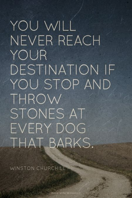 You will never reach your destination if you stop and throw stones at every dog that barks. - Winston Churchill