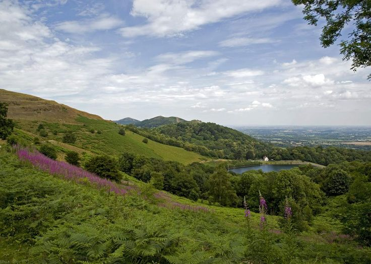 """A walk on the Hill.The air is still on Malvern HillI walk above the cloudColwall and Welland and hidden nowBy a whitened dampened shroud I'm above The Chase Inn nowAway from Malvern town"""" Right side of the hill"""" they sayYou'll see by at sundown And in..."""