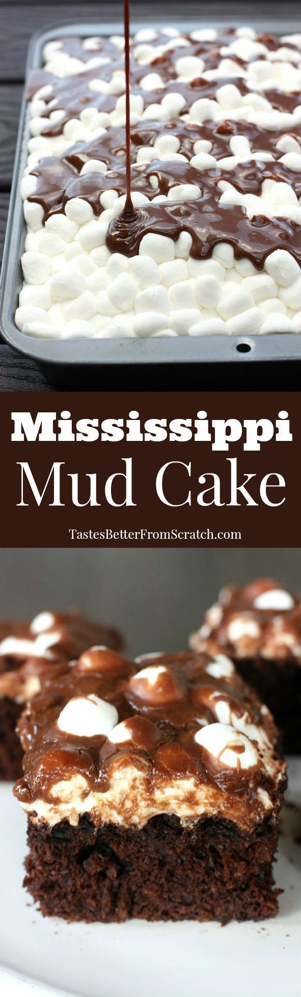 Mississippi Mud Cake–homemade chocolate cake with marshmallows and warm chocolate frosting poured on top! BEST CAKE EVER!