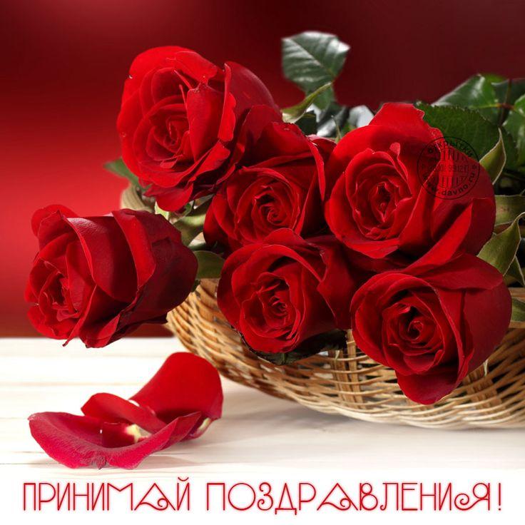 Открытки розы любимой, поздравлениями для