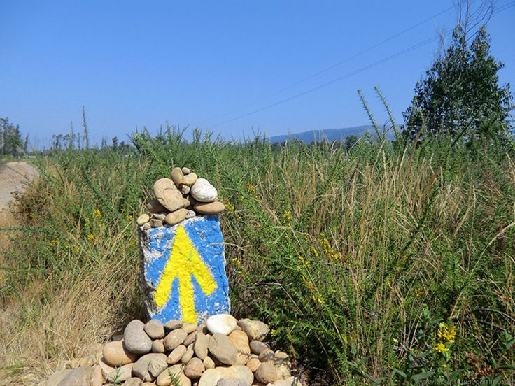 near Valenca, Portugal #caminoportugues